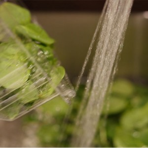 step-1-fill-add-greens-to-sink