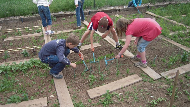 school-garden-1737320_1280