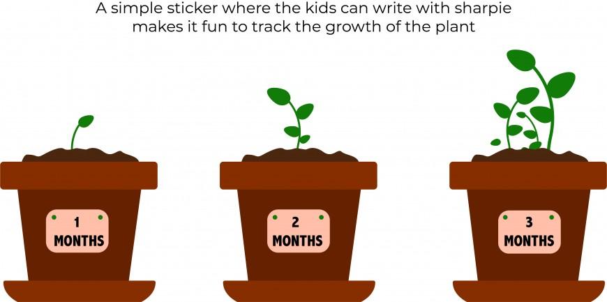 plants_monthly